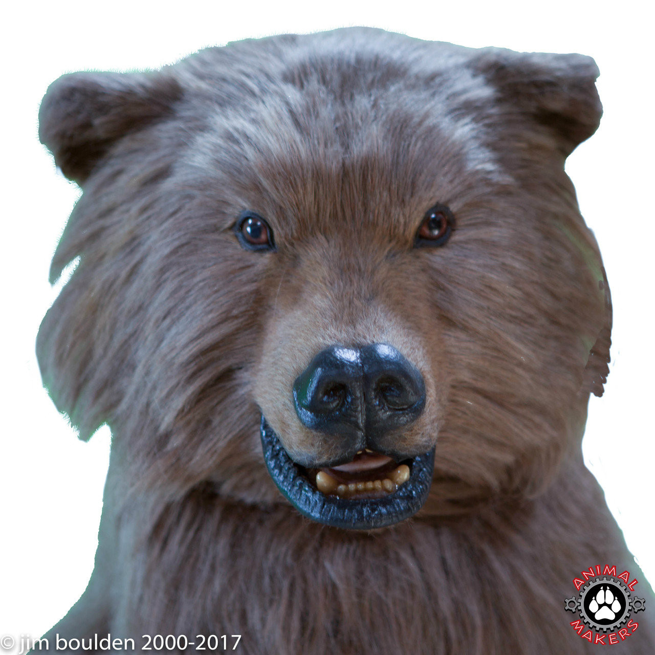 Boo Boo the Millennial Bear Costume  sc 1 st  Animal Makers & Realistic Brown Bear Costume For Rent Los Angeles