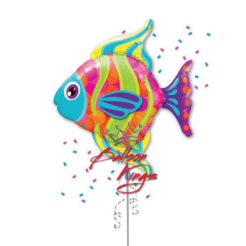 Fashionable Fish