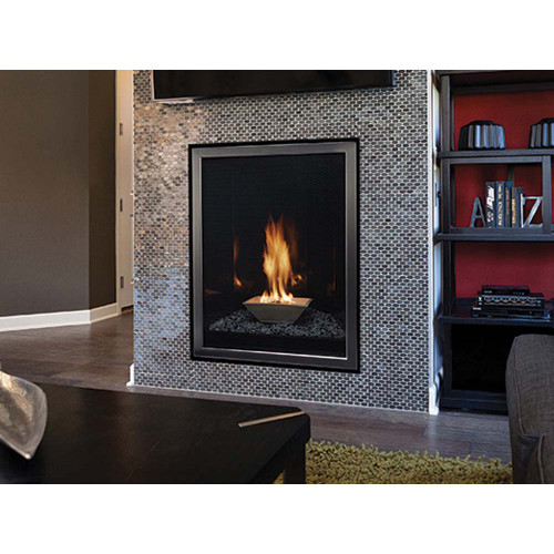 Empire Forest Hills Contemporary Direct-Vent Fireplaces