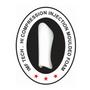 "TOP TEN Shin Guard for Thaiboxing, K1, MMA ""Mohicans"" (33184-6)"
