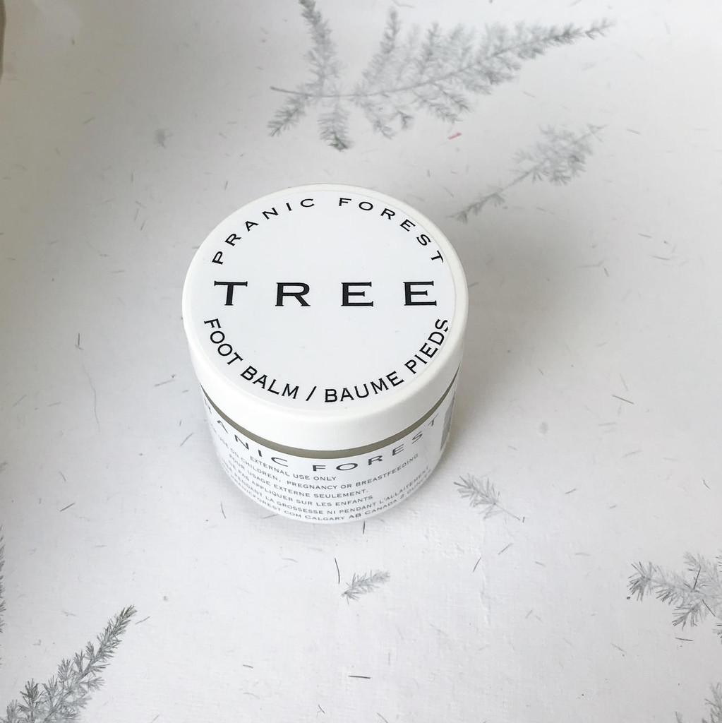 TREE    earth +  fire foot medicine