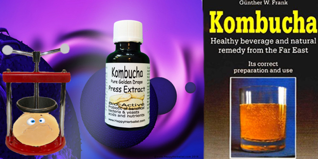 Kombucha Mushroom Extract Pure Golden Drops