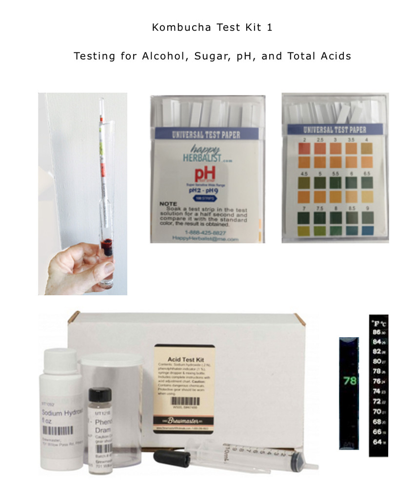 Kombucha Test Kit 1