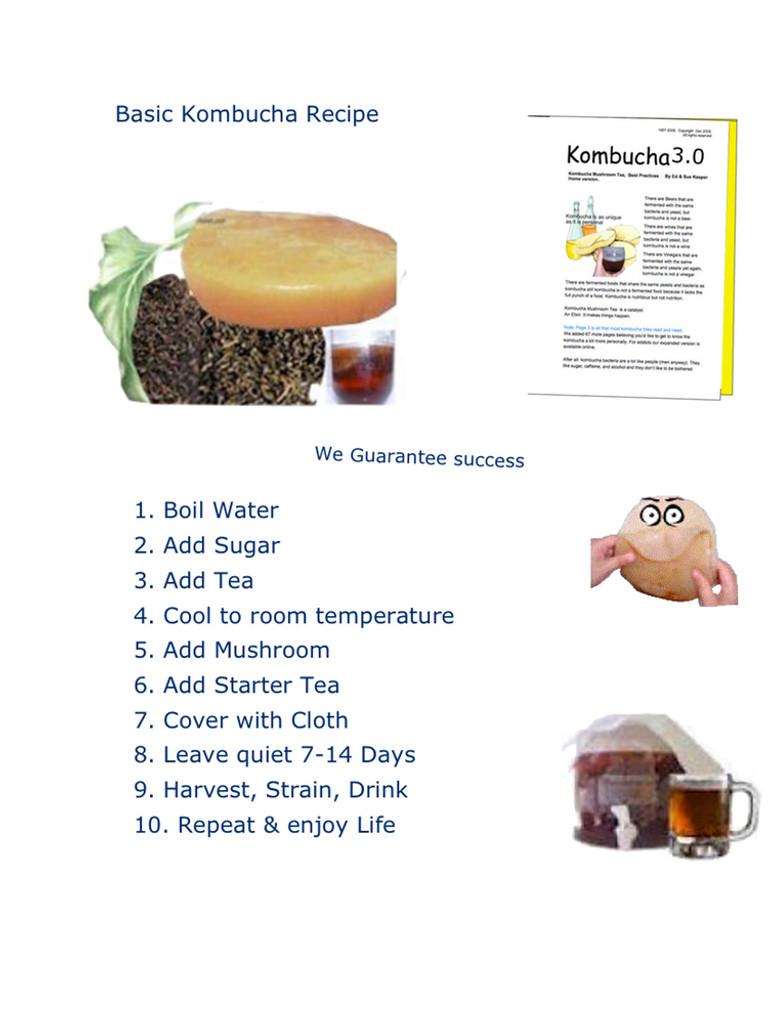 How to Make Kombucha.  Simple Kombucha Recipe