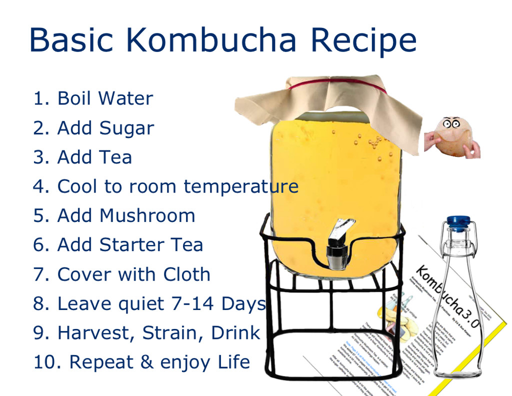One Gallon Glass Jar with dispenser and metal stand. Includes metal screw on cap, food grade plastic spigot and optional stainless steel spigot and stainless filter for smooth clear pour. How to Make Kombucha.  Simple Kombucha Recipe