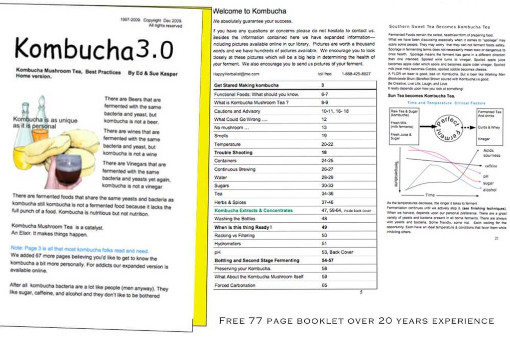 Free 70 page Kombucha Brewing Guide learn is your kombucha healthy or not, Over 20 years experience  making, selling and advising kombucha brewers since 1997.