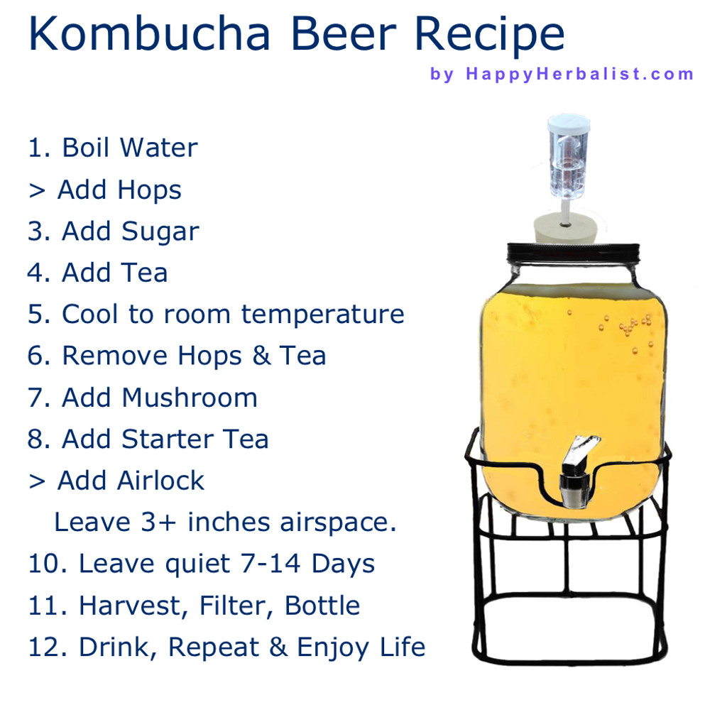 Create a personal Kombucha Tea  into  a personal Kombucha Beer with all the health benefits of your Kombucha tea. Free Brewing Guide with full support.