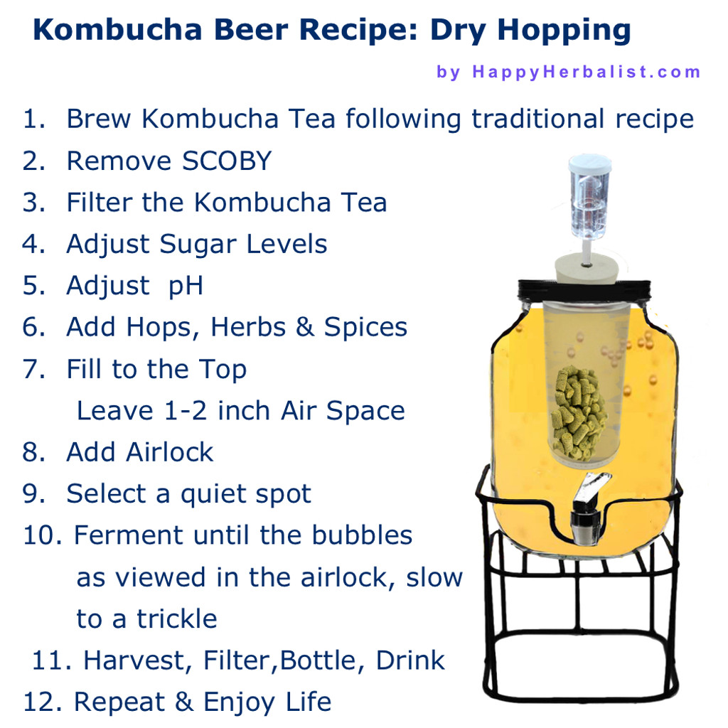 Simple Kombucha Beer Recipe. Craft Brew your favorite Kombucha Beer. Create just the right alcohol level you want