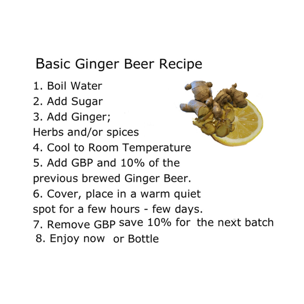 Basic Ginger Beer: Ginger, Lemon, Sugar and GBP.  Learn the difference between Dried Ginger and Fresh Ginger. Adding medicinal herbs, spices and teas for the best Craft Ginger Beer anywhere.