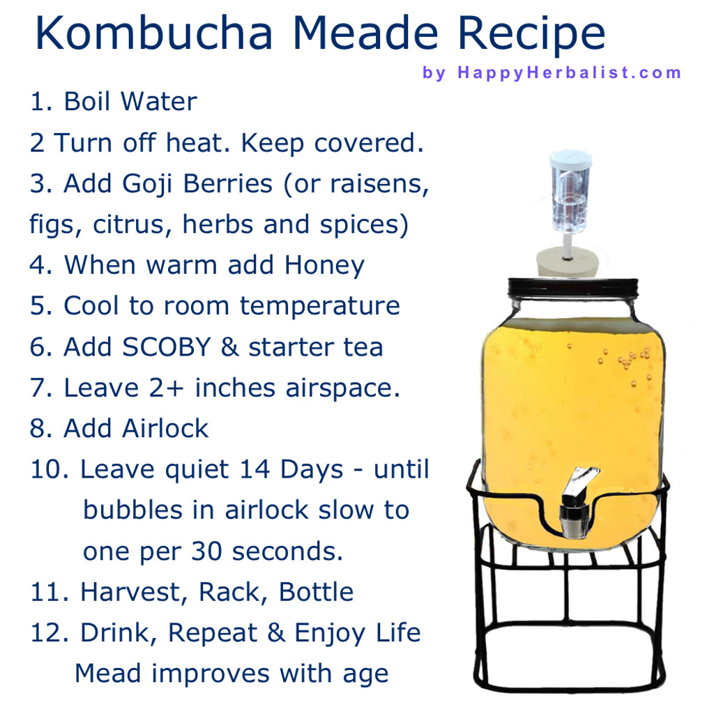 Kombucha made with Honey and slightly anaerobic offers the world renown health benefits of Kombucha Tea along with the benefits of honey  with the character and sensation of mead. Kombucha Craft Brewing. Enjoy.