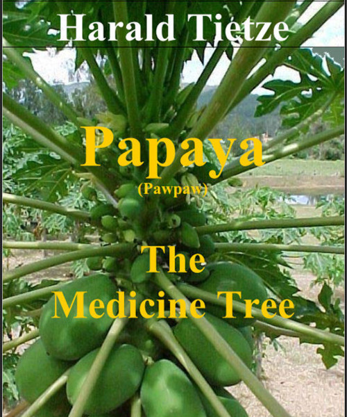 Paypaya Paw Paw the Medicine Tree by Harald Tietze