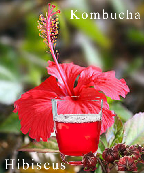 Kombucha Hibiscus Tea Wine
