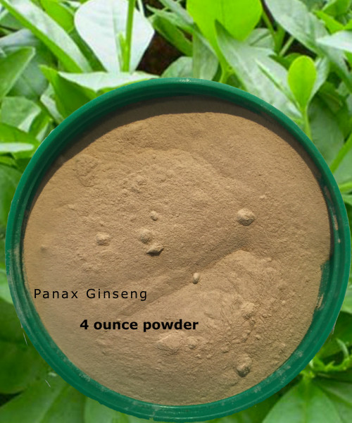 Panax GInseng powder just a 1/4 teaspoon daily