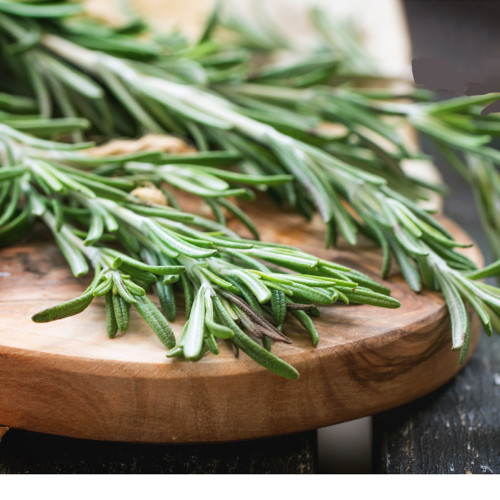 Fresh Rosemary 4 ounces aromatic and flavorful