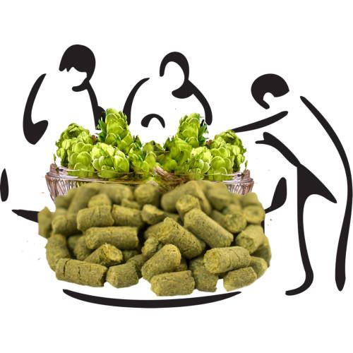 Hops Hop Pellets, amarillo. Cascade, Chinock, Columbus, CrstalFuggle, Hallertauer, Lemon drop Hops, Saaz, Simcoe, Summit, Warrior. WE also have Gruits and medicinal teas and spices.