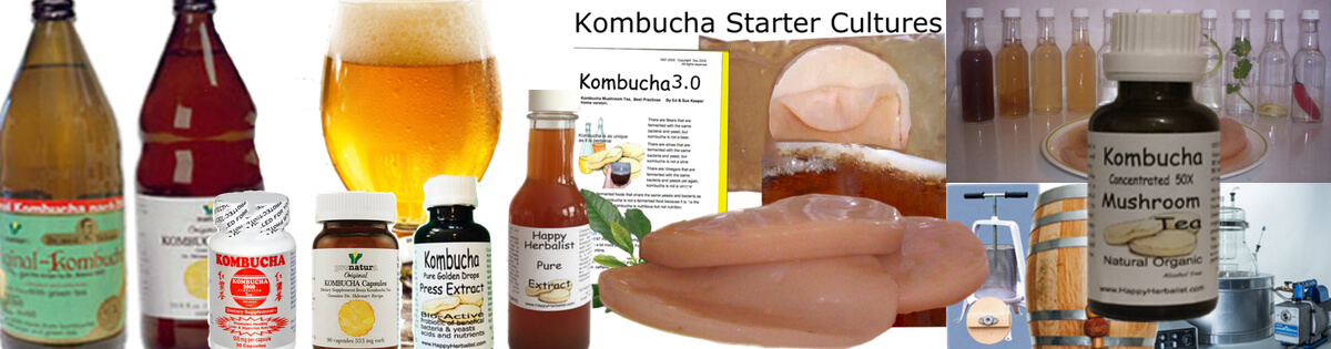kombucha-tea-for-long-life.jpg