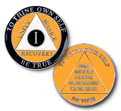 Hawk -Eye Anniversary Coin AA Alcoholics Anonymous Anniversary Coin