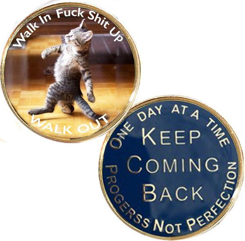 NEW! Walk In Walk Out Recovery Medallion. #i07