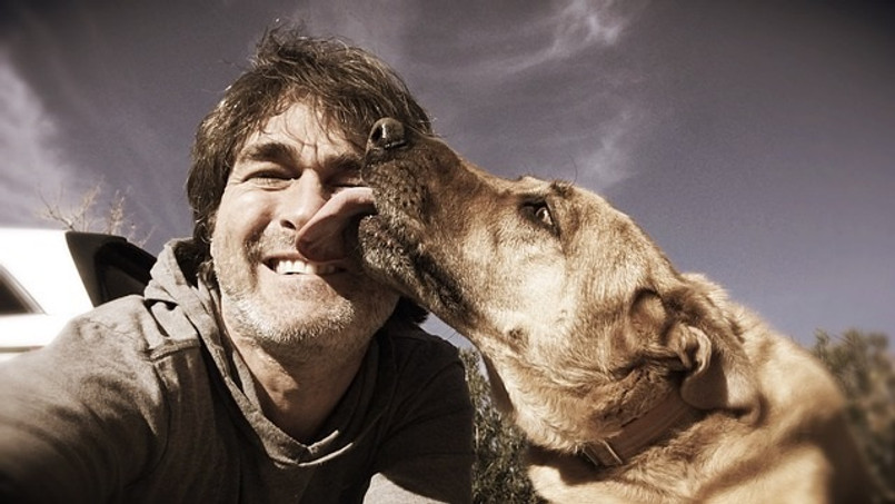 3 Ways a Dog Can Help Your Recovery