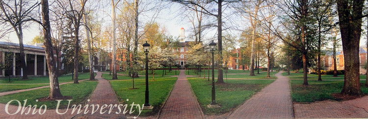 CUTLER HALL PANORAMIC PRINT