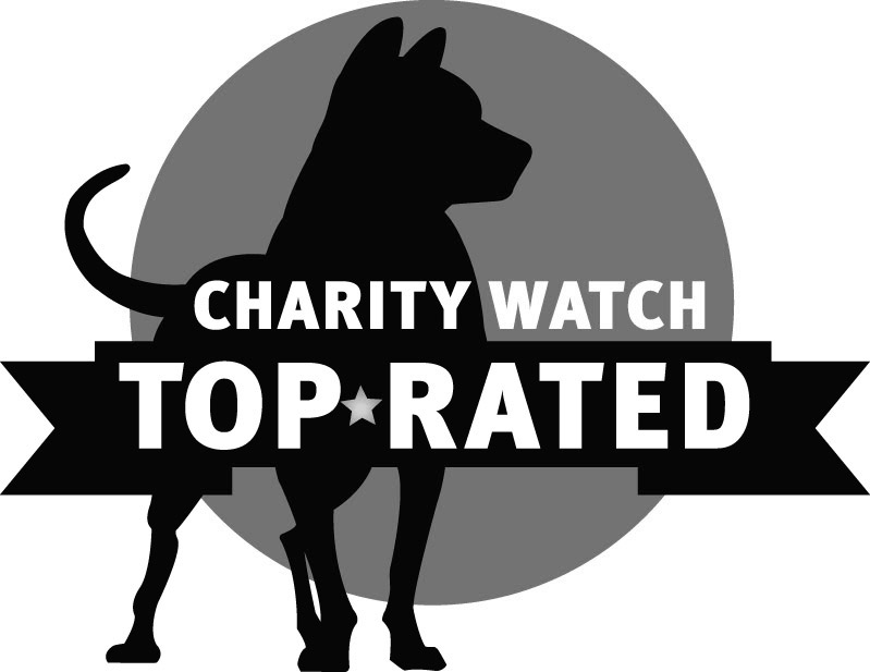 Charity Watch Top Rated