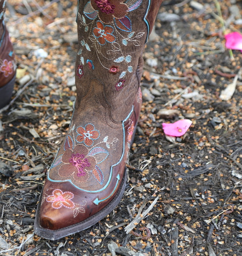 Old Gringo Bonnie Pippin Chocolate Boots L696-12 Embroidery