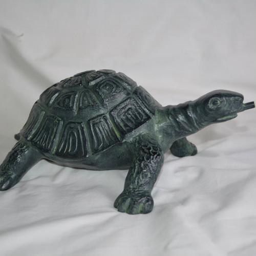Investigating Turtle