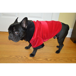 Velvet Smoking Jacket for Dogs