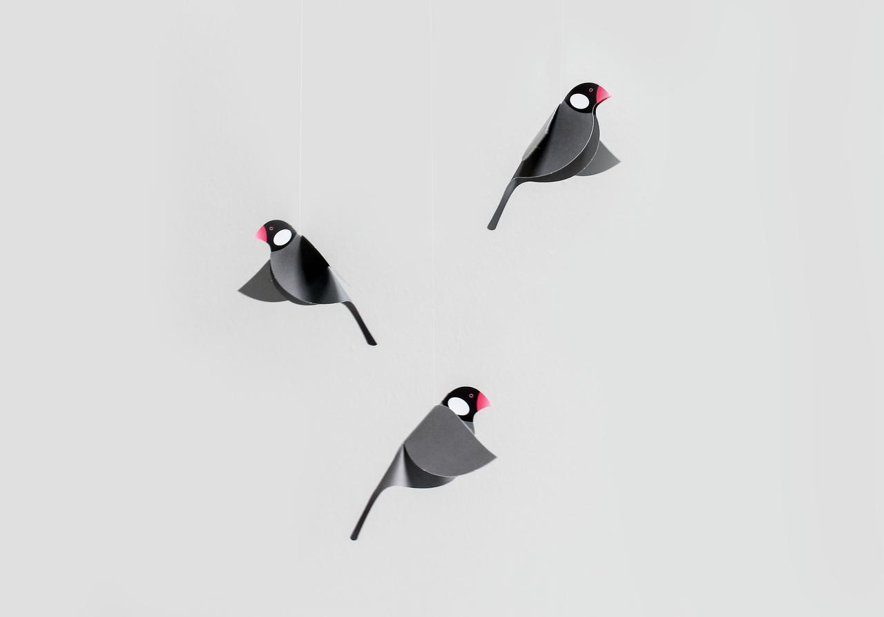 Java Sparrow Mobile, Black