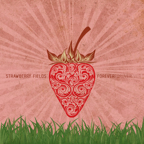 STRAWBERRY FIELDS BY THE VAPOR HUT 30 ML FOR ONLY $7.99 CLOSE OUT!