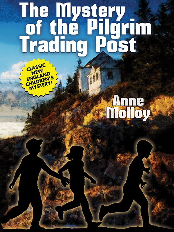 The Mystery of the Pilgrim Trading Post, by Anne Molloy (epub/Kindle/pdf)