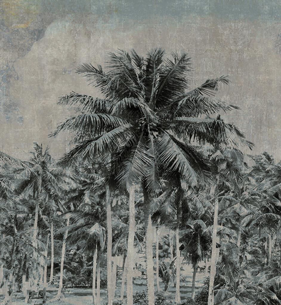 Wallpaper - Tropical Palms