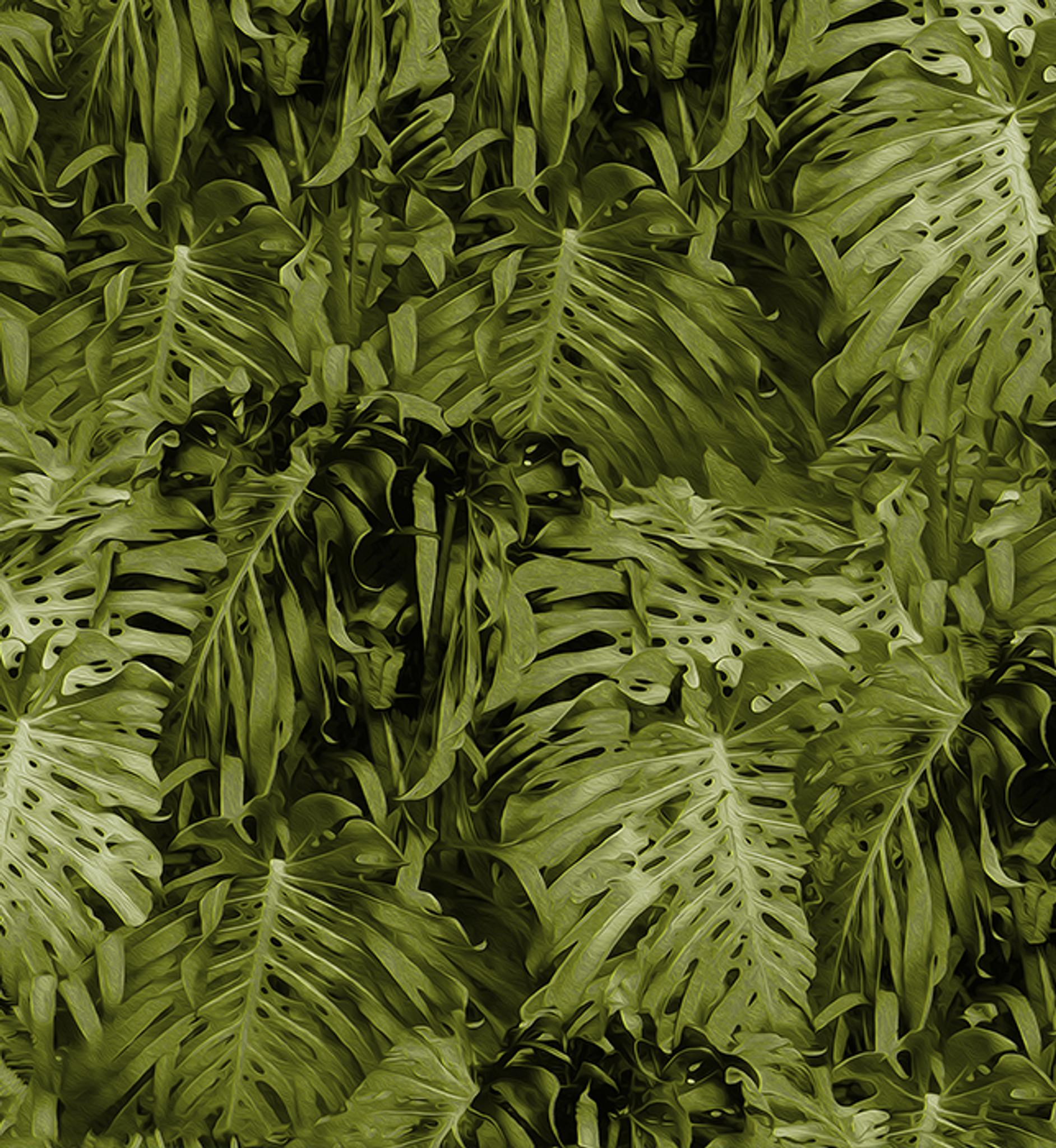 Fabric - Jungle Vibe - Lime