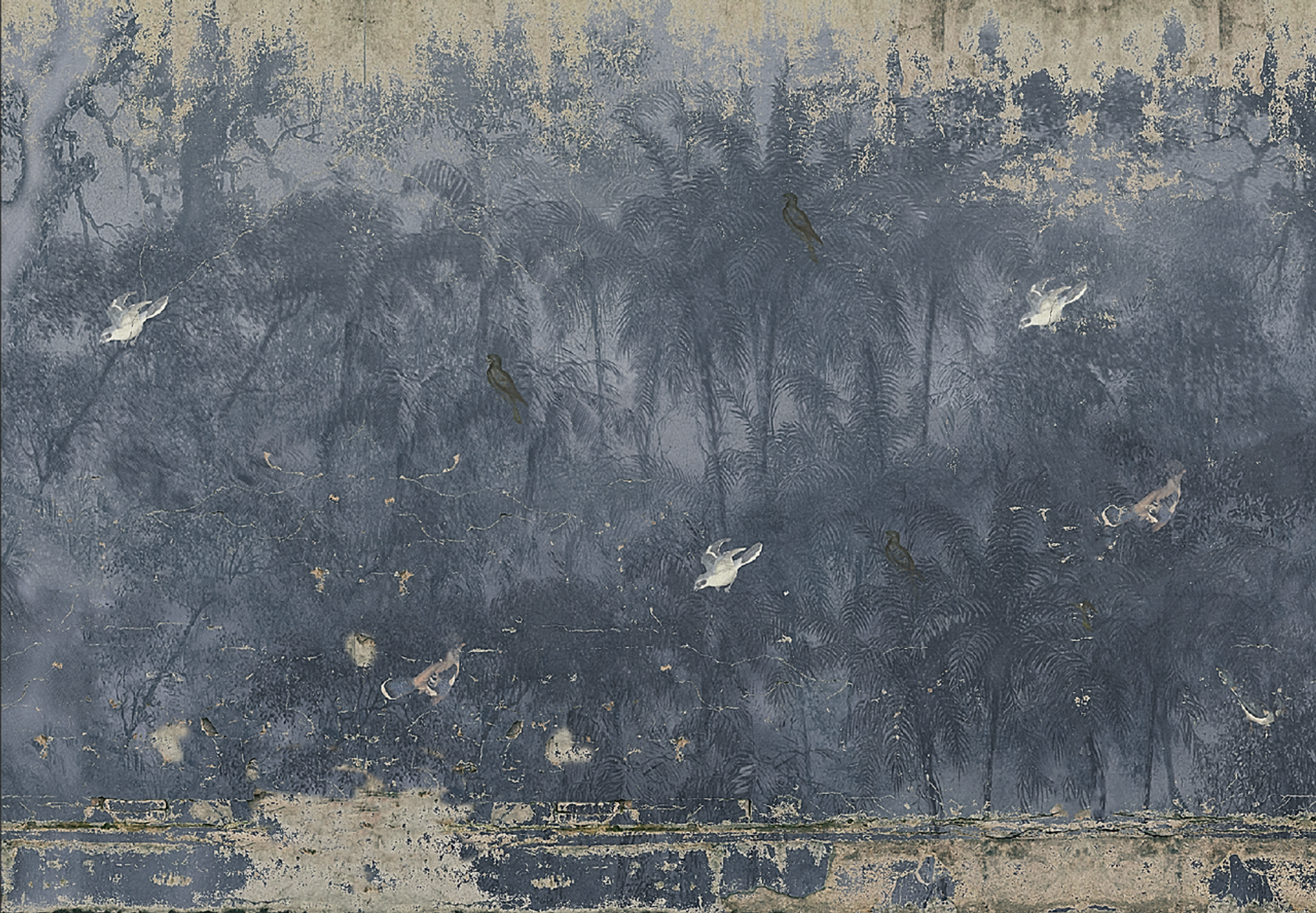Wallpaper - Tropical Forest Fading