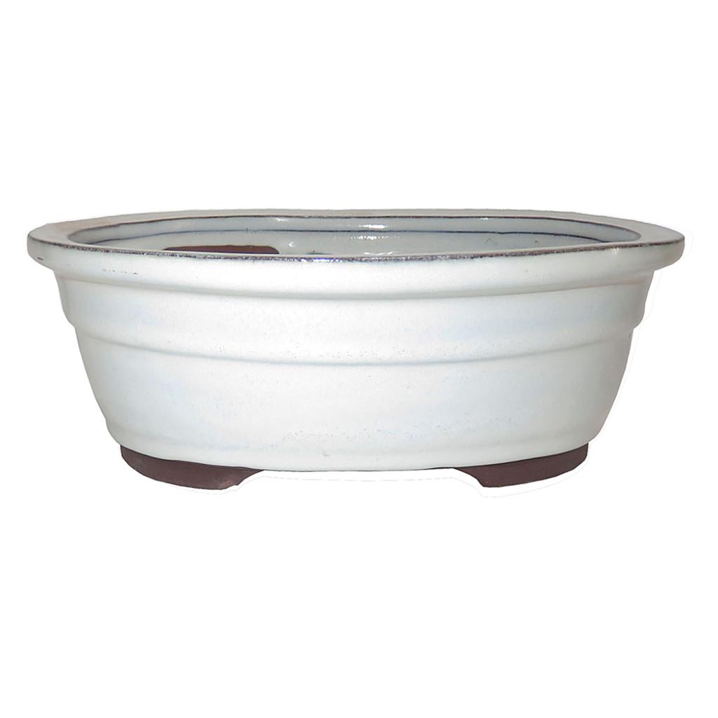 "10"" Oval Bonsai Container CGO38-10NCM"