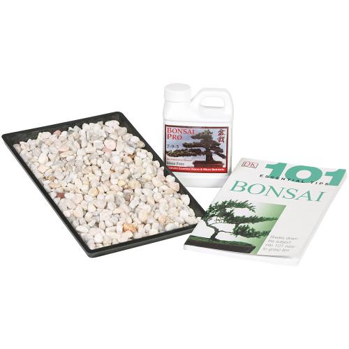 """Bonsai Starter Success Kit With 8"""" Humidity Tray - SPCOMBO1"""