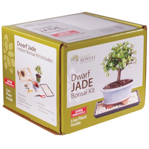 Dwarf Jade Kit - DTDJKIT