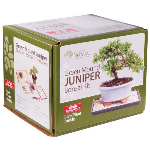 Green Mound Juniper - DTGMJKIT