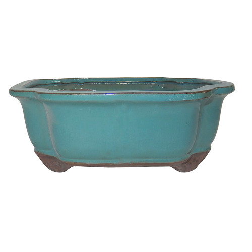 Glazed Lotus Container CGI4-6GN