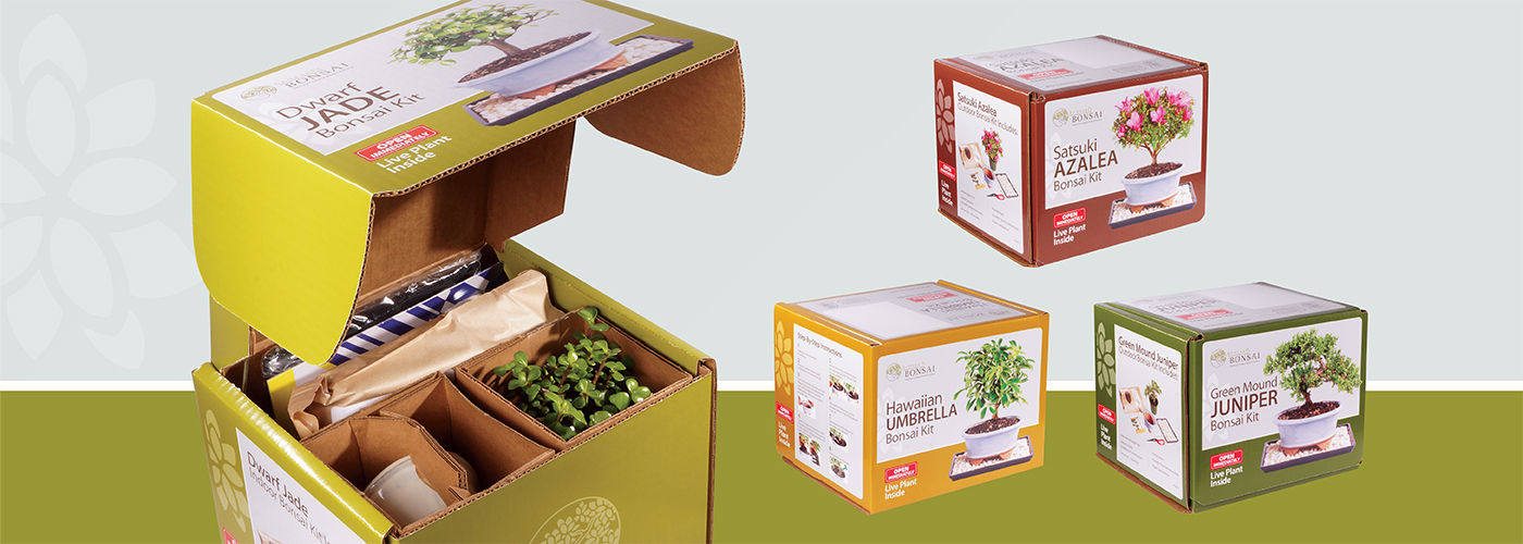 Brussel's Bonsai Kits are perfect for the bonsai hobbiest
