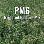 PM6 - Irrigated Pasture Mix