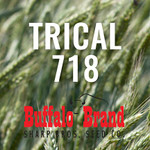 Trical 718 Awnletted Medium to Late Maturity