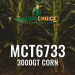 MCT6733 Hybrid Corn