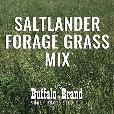 Saltlander Forage Grass Mix