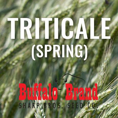 Triticale (Spring)