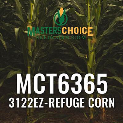 MCT6365 Hybrid Corn