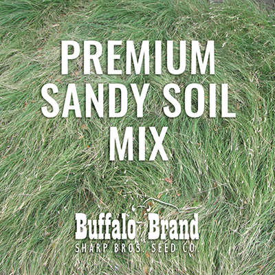 Premium Cover Mix - Sandy Soil