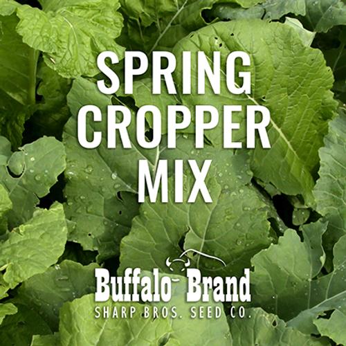 Spring Cropper Mix - Grazing/Haying