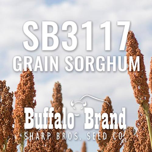 SB3117 Grain Sorghum (Milo)