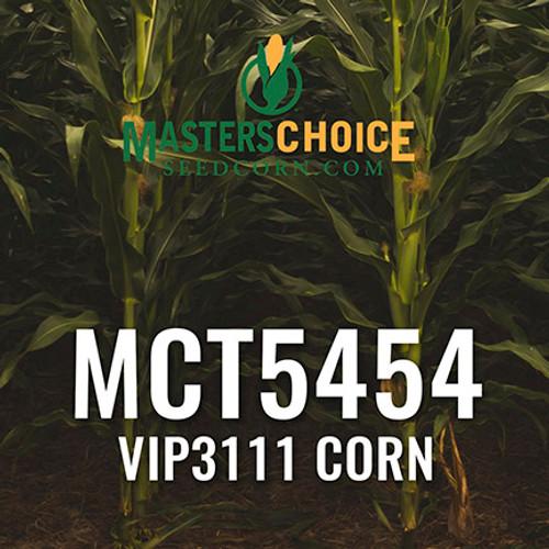 MCT5454 Hybrid Corn
